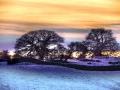snow_silhouette658x465
