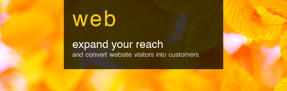 Website Design in Cumbria